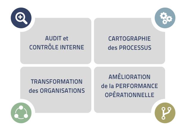 Organisation & processus